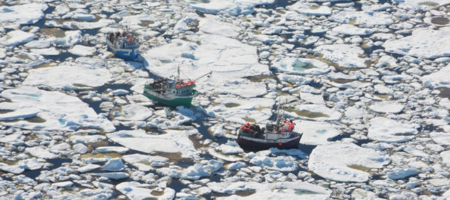 IRONY: Global Warming Study Is CANCELLED Because….THICK SUMMER ICE!