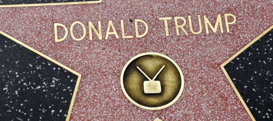 Young Trump Supporter Cleans Trump's Defaced Hollywood Star – Liberals Tear Her Apart On Twitter