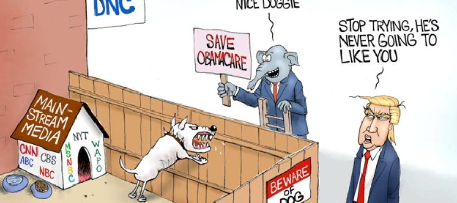 Democrat's Best Friend (Cartoon)