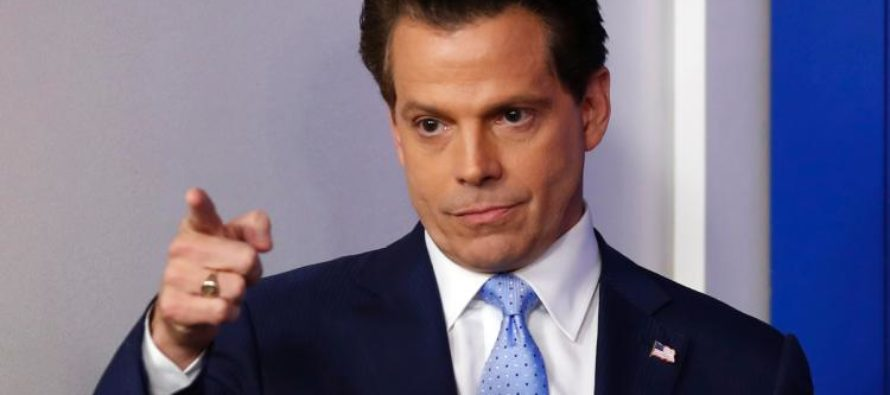 Scaramucci Says He Will Take Dramatic Action To Stop Leaks… May Fire Everybody [VIDEO]