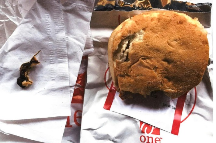 Woman files lawsuit against Chick-fil-A after finding DEAD RODENT stuffed inside the bun