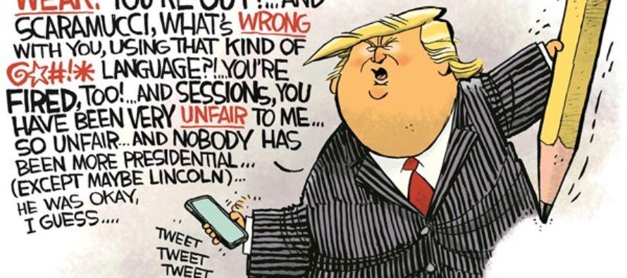 SelfDrawing Cartoon (Cartoon)