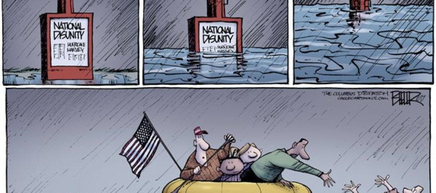 Floodwaters (Cartoon)