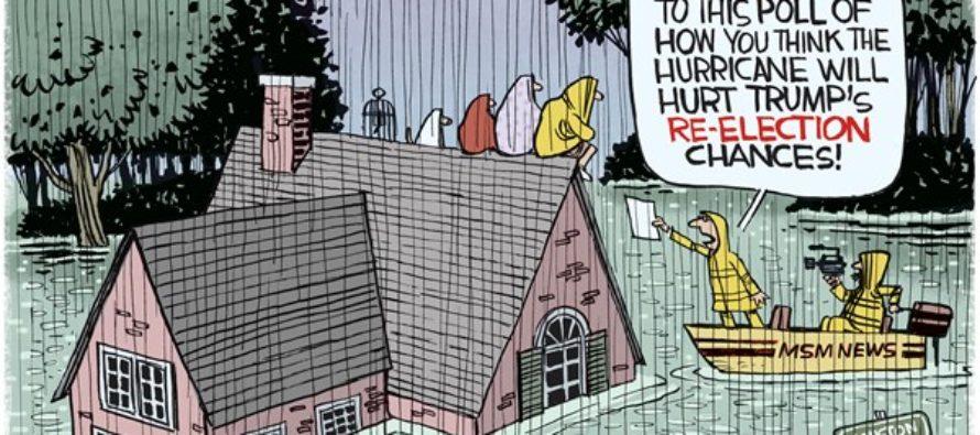 Houston Flooding (Cartoon)