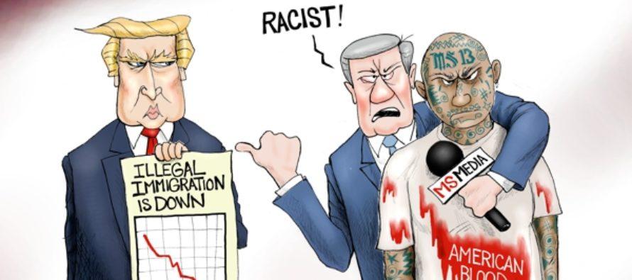 MS Bros (Cartoon)