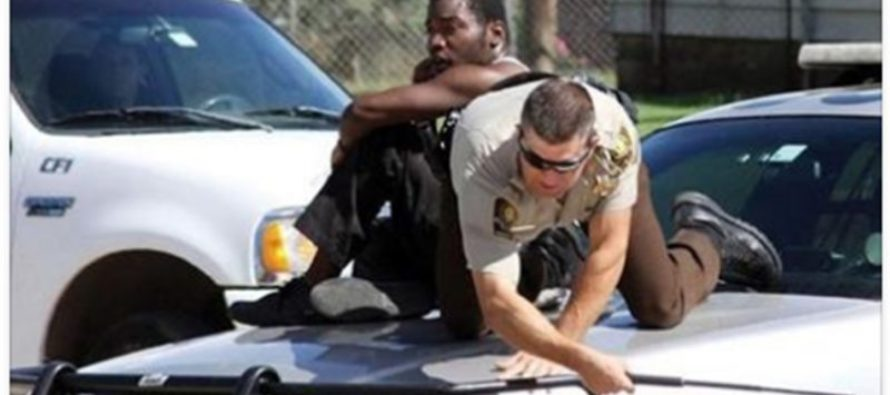 Man and Officer Seek Shelter on Top of Police Car Together While Being Attacked [PHOTOS]