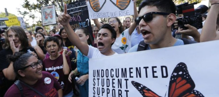 Brace Yourselves For IMPACT – Illegal Alien Sitcoms Headed To CBS And CW