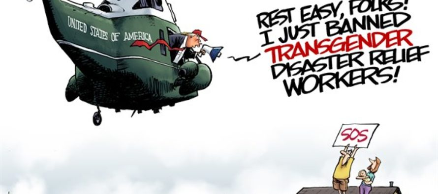 Disaster Relief (Cartoon)