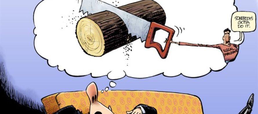 Dreamer (Cartoon)