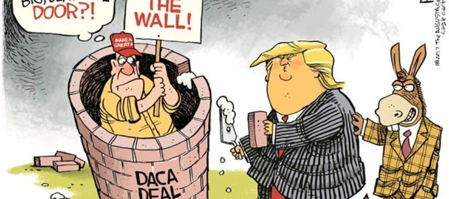 Trump Wall (Cartoon)