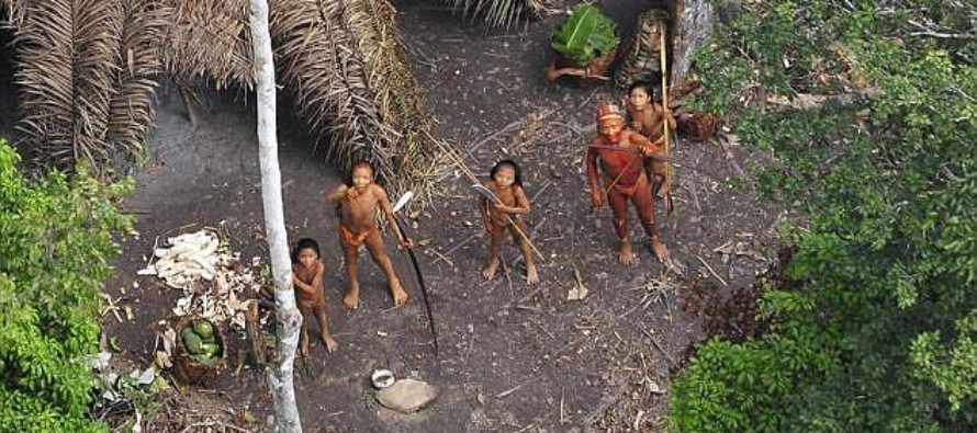 Gold Miners Slaughter Uncontacted Amazonian Tribe – Brag About It In Bar
