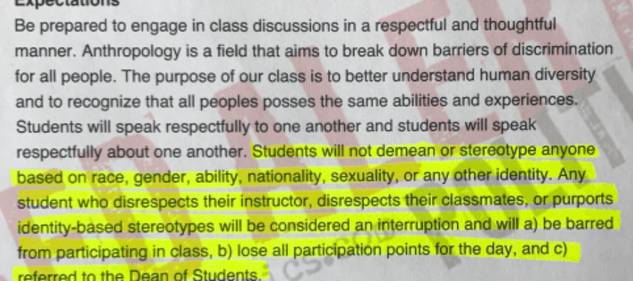 Professor Threatens Stereotypers as She Stereotypes