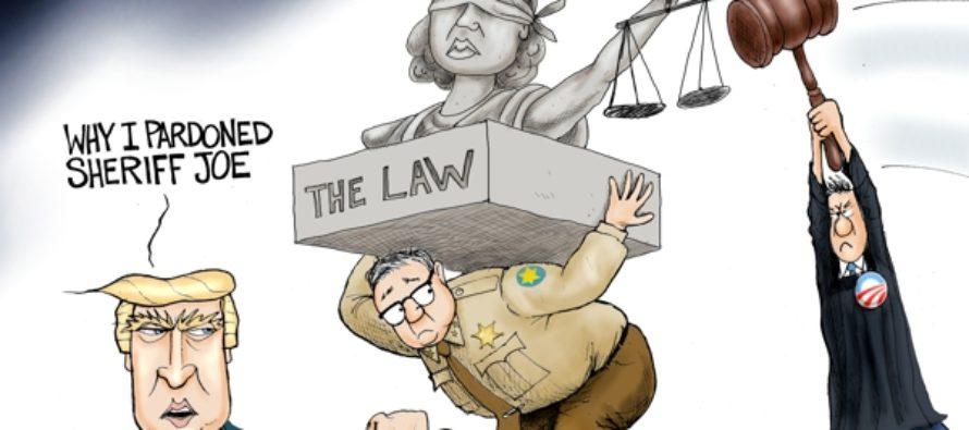 America's Toughest Sheriff (Cartoon)