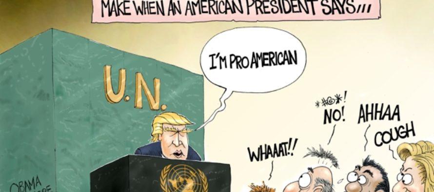 Shock and Awe (Cartoon)
