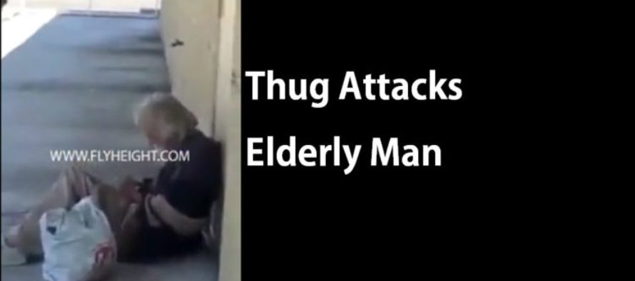 Teen Attacks Homeless Elderly Man [Video]