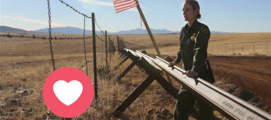 DOH Cuts Legal Obstacles To 'Immediately' Begin Border Wall Construction