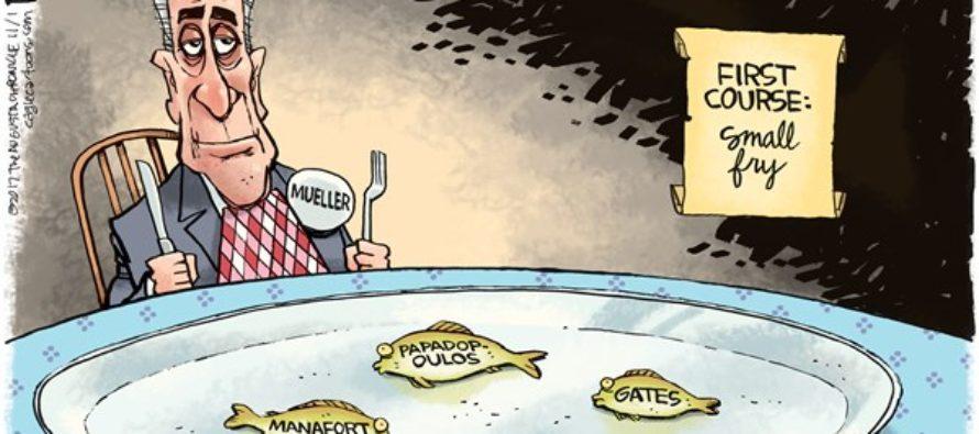 Mueller Small Fry (Cartoon)