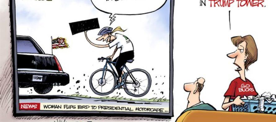 Flipping the Bird (Cartoon)