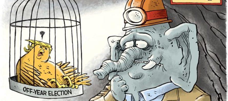 Trump Canary (Cartoon)