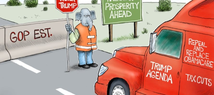 Road KIll (Cartoon)