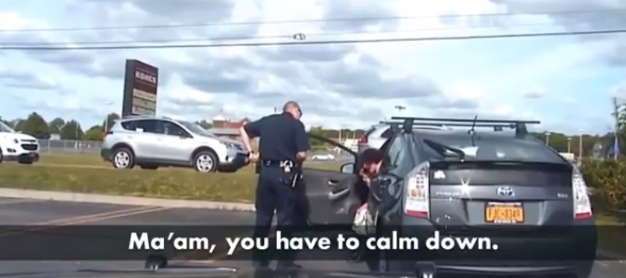 Smug Democrat Lawmaker Tries To Bully Cop – Gets Nasty Dose Of Karma [VIDEO]