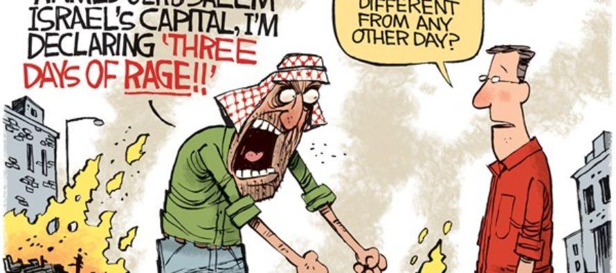 Days Of Rage (Cartoon)