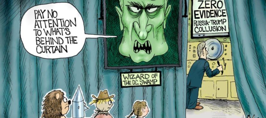 Wizard of D.C. (Cartoon)