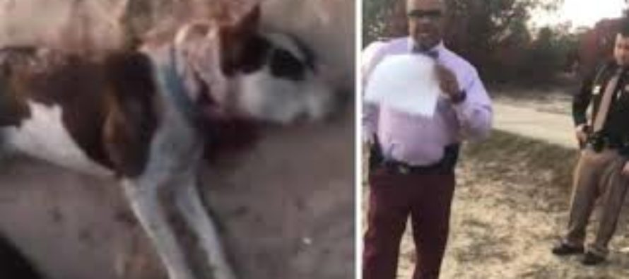 Cops kill man's dog & then demand that he cut off his dog's head so it could be tested for rabies [VIDEO]