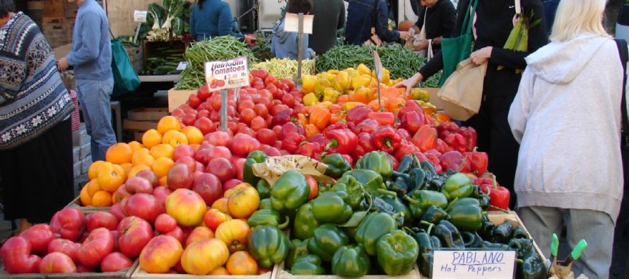 Why Farmer's Markets Must Be Banned and Mandatory