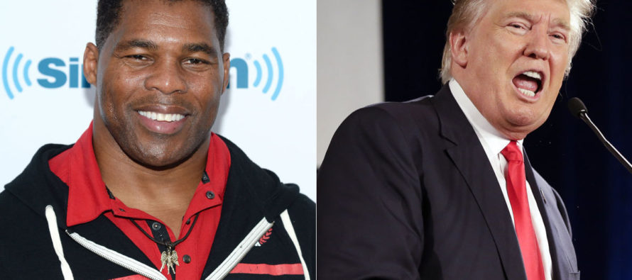 NFL Legend Herschel Walker: Trump is 'Getting a Raw Deal,' 'We Have to Respect Him as Our President' [VIDEO]