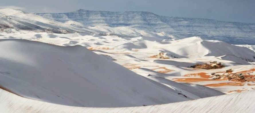 A Cold Snap Brings Snowfall to the Sahara Desert for the second winter in a row
