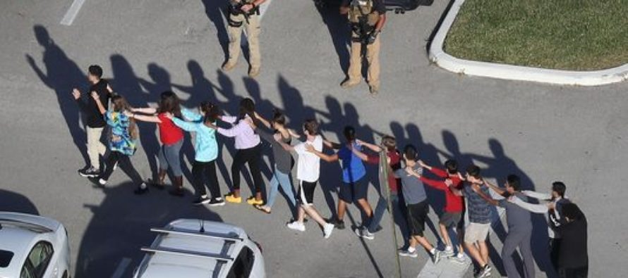 Sure, I'll Say It: 'Liberals Don't Want to Stop School Shootings'