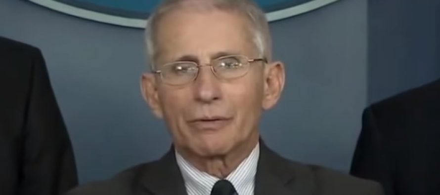 If You Want to Know Why Americans Have Embraced Anti-Intellectualism, Look at Anthony Fauci