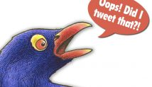 The 30 Best Conservative Twitter Feeds Of 2012